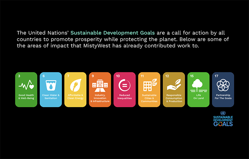 UN Sustainable Development Goals that MistyWest has worked in